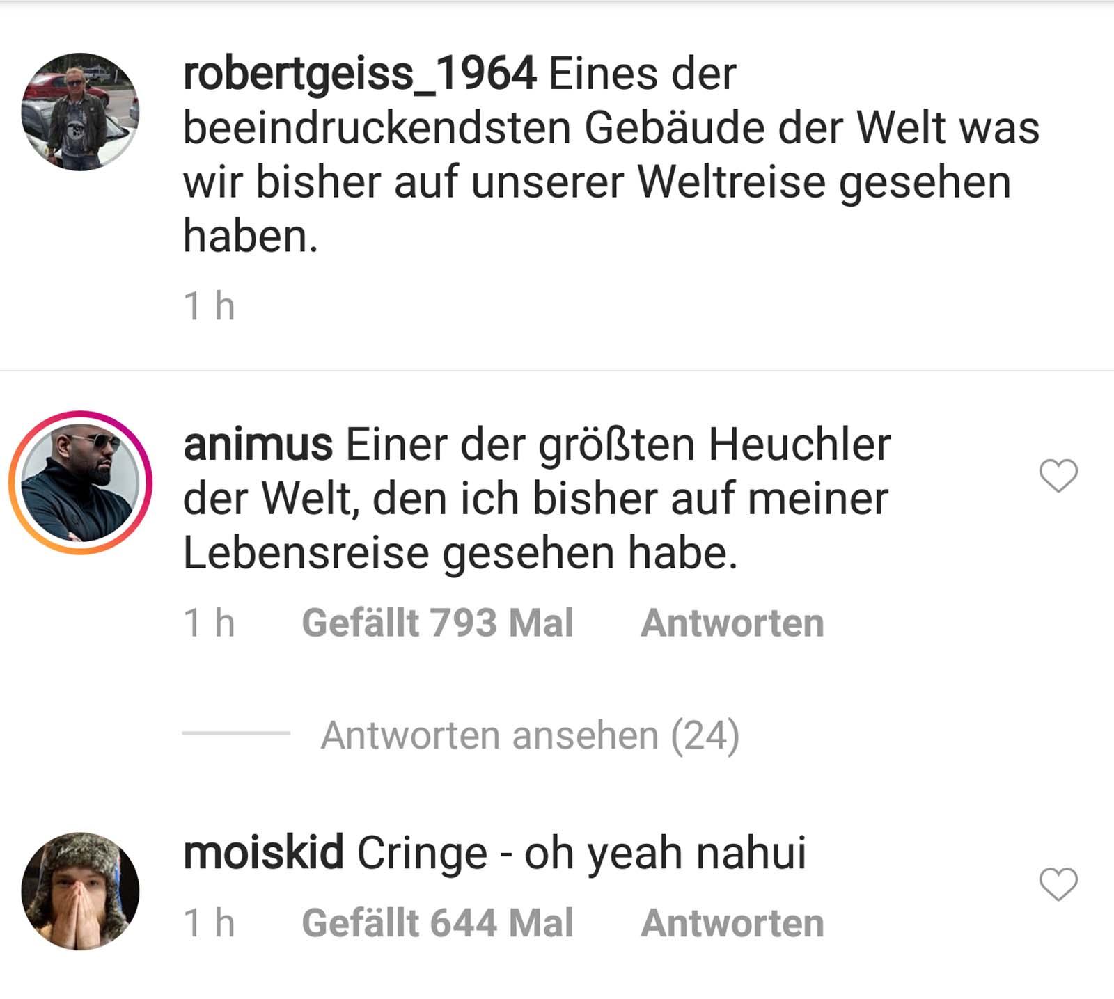 Animus über Robert Geiss