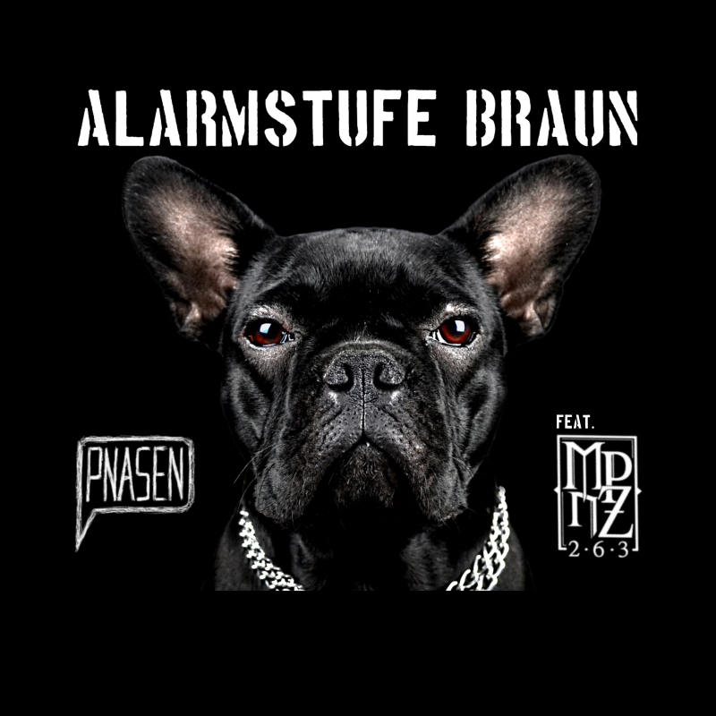 Upcoming: PNASEN - Alarmstufe Braun Feat. MPnZ  (prod. By Pnasen)