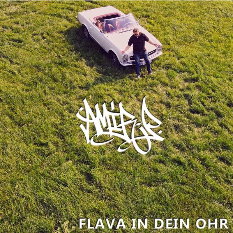 Upcoming: Amir P - Flava In Dein Ohr