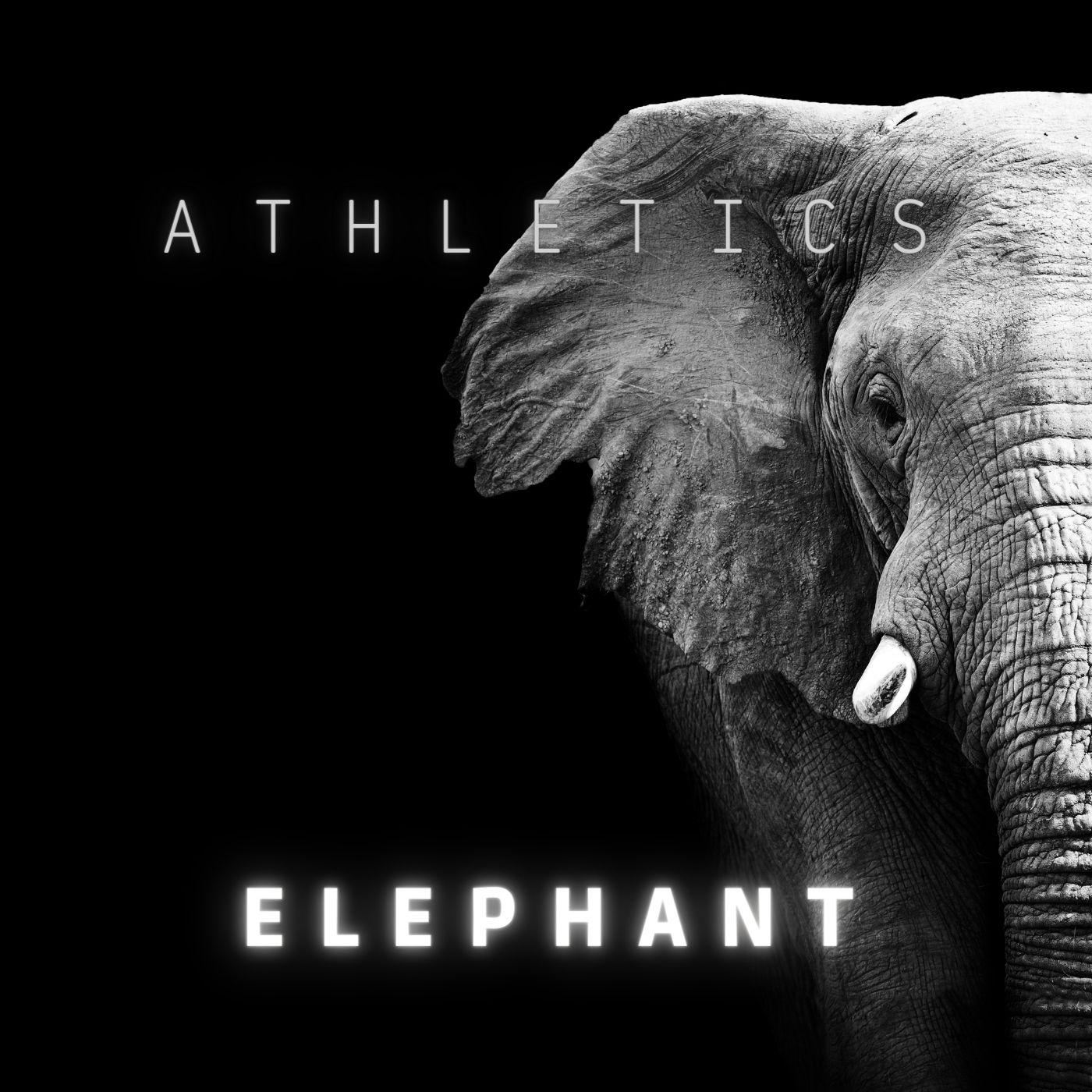 Upcoming: Athletics - Elephant