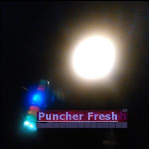 Bild des Benutzers PuncherFresh