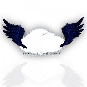 Bild des Benutzers SkaytheLimit