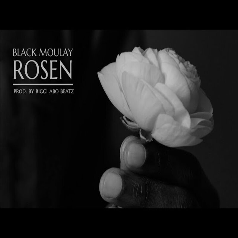 Upcoming: Black Moulay - Rosen
